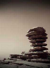Pancake Rocks von Damien Yoccoz