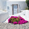 Whitewash-and-flowers-in-cyclades-greece
