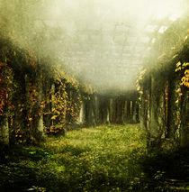 secret garden by paula aguilera