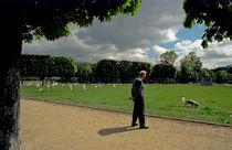 The headless shadow von Andrei Becheru