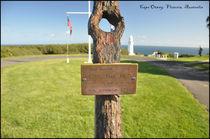 Anchor in Cape Otway von Monica E Kok