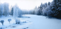 'Winter in Finland' by Marcus Hermansson