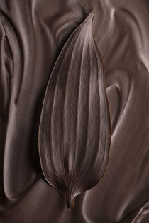 chocolate leaf von Kris Shopov