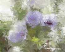 Violetas by Gabriel Mendez