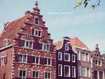 Amsterdam by Laura Font Sentis