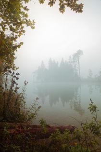 Insel-im-nebel-soft