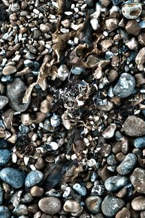 Pebbles on Brighton beach von Simeon Jones