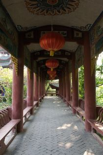 Walkway, China by Simeon Jones