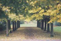 Autumnday von Alexandra Slager