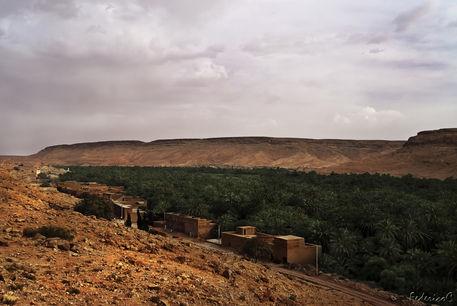 Valle-dello-ziz-marocco-2011