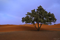 Merzouga-ai-piedi-del-deserto-marocco-2011