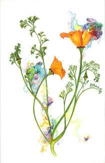 Poppy by Ivette Evans