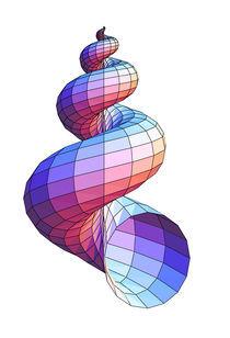 Seashell von Stewart Dickson