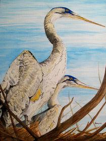Nesting-herons