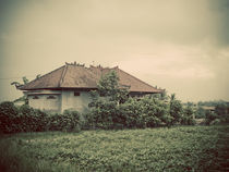 Balinese Architecture von Darren Martin