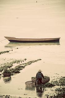 Seaweed Farming Boats von Darren Martin