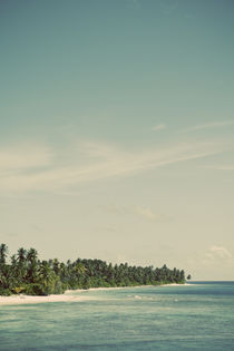 Maldivian Island 2 by Darren Martin