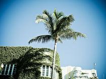 Art Deco vines by Darren Martin
