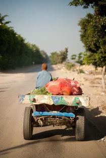 Transportation-gelfina-aegypten-2010