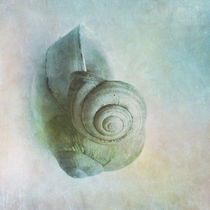 Snails1a