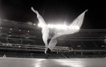 Wings at Maracanã von Reinaldo Smoleanschi