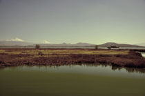 Texcoco Lake 02 by Luis  Gallardo