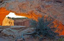 Mesa Arch von Ken Dvorak