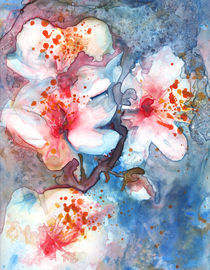 Cherry Blossom 2 by Yevgenia Watts