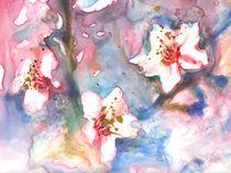 Cherry Blossom 1 von Yevgenia Watts