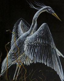 Crane by Deb Thompson