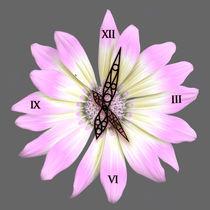 Blumenuhr111005v2