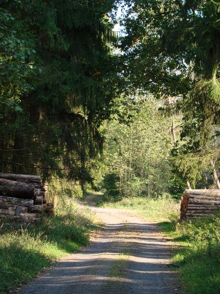 Herbst-2011-170