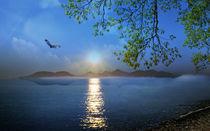 Island Paradise von Bruno Santoro