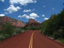 The Road into Zion by Jeffrey Batt