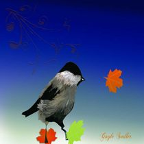 Chickadee in Fall by Gayle  Sadler