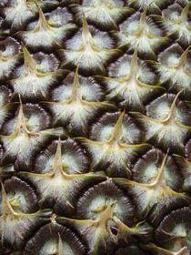 Pineapple Skin von mei-chwen
