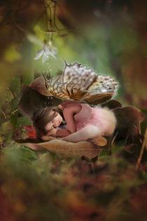 sleeping feiry by mira-arnaudova