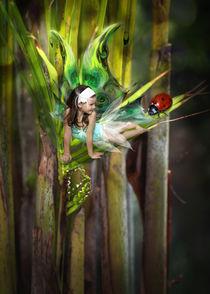 little fairy by mira-arnaudova