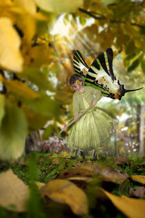 Fairy in the garden by mira-arnaudova