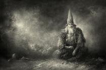 Wizard by yaroslav-gerzhedovich