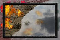 FIRE AND WATER by photofiction