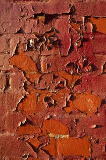 Red Wall von John Greim