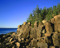 Rocky Coast, Acadia, Maine by John Greim