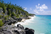 Astwood Cove beach, Bermuda by John Greim