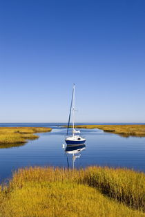 Salt Marsh, Sailboat, Cape Cod, USA by John Greim