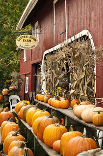 Autumn farm stand, Connecticut, USA von John Greim