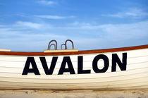 Avelon, New Jersey by John Greim