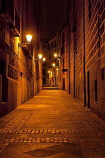 Alley at night, Madrid, Spain by John Greim