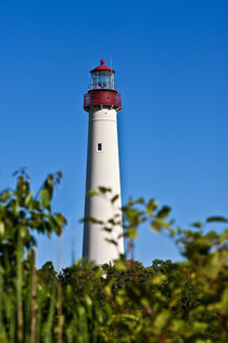 Cape May Lighthouse, New Jerey, USA von John Greim