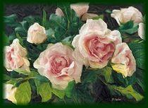 Englische Rose by Anna Tabor